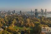 Herfst in Het Park in Rotterdam