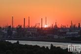 Te Koop | De zonsondergang in de haven van Antwerpen