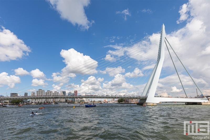 De Erasmusbrug in Rotterdam tijdens de Wereldhavendagen