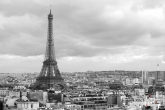 Te Koop | De Eiffeltoren in Parijs in zwart/wit