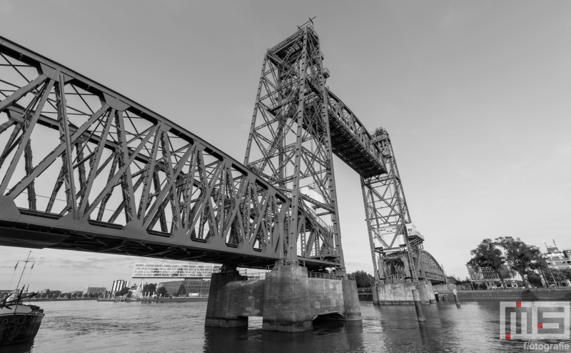 Te Koop | Spoorbrug De Hef tussen het Noordereiland en Rotterdam-Zuid