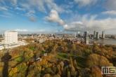 Te Koop | Het Park en het Erasmus MC in Rotterdam tijdens een typisch Hollandse Wolkejesdag