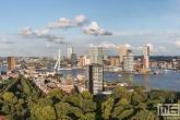 Te Koop | Het Park en de Wilhelminapier in Rotterdam tijdens een typisch Hollandse Wolkejesdag