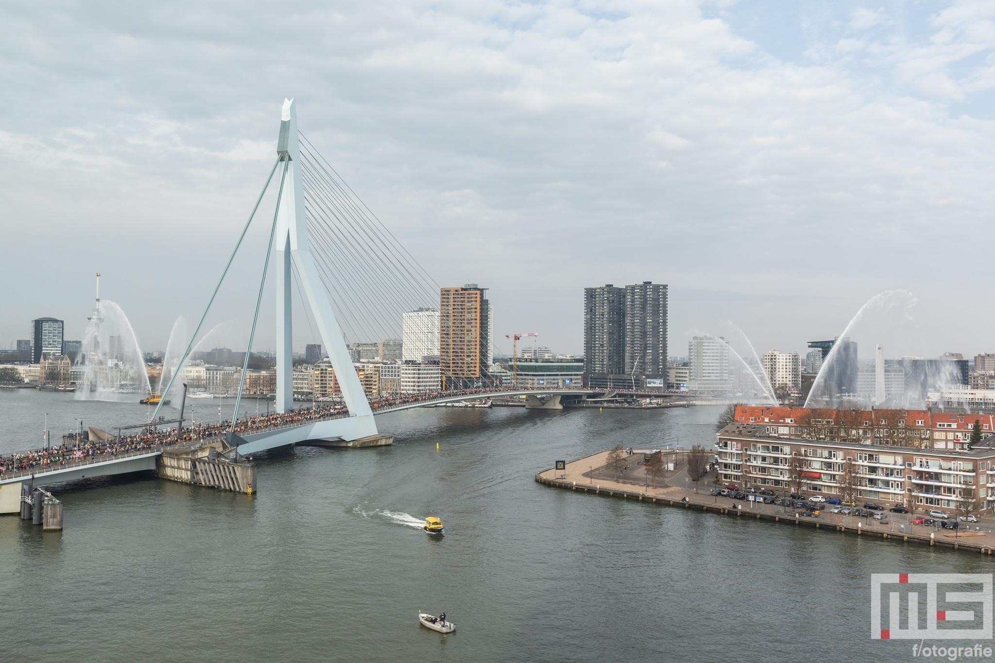 De start van de NN Marathon Rotterdam aan de voet van de Erasmusbrug in Rotterdam