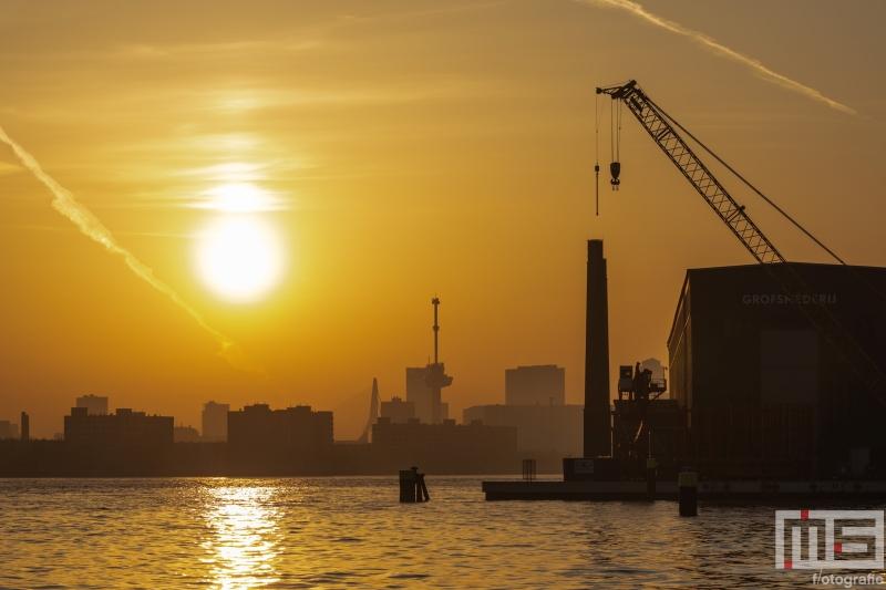 Te Koop | De skyline van Rotterdam tijdens zonsopkomst vanuit de RDM Rotterdam