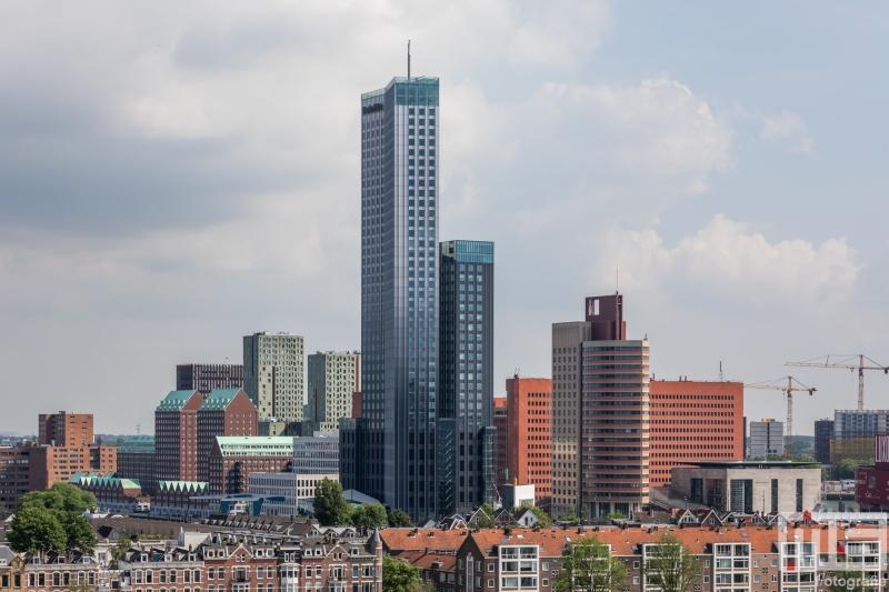 De Maastoren en het Noordereiland in Rotterdam tijdens de Rotterdamse Dakendagen