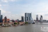 Te Koop | De Maastoren en de Erasmusbrug in Rotterdam tijdens de Rotterdamse Dakendagen
