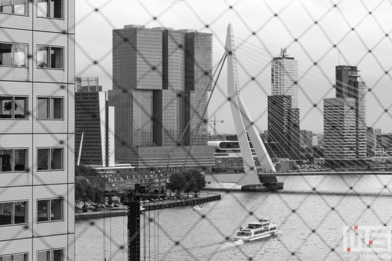 De uitzicht op de Erasmusbrug in Rotterdam tijdens de Dag van de Architectuur