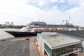 Te Koop | Het cruiseship Ms Rotterdam aan de Cruise Terminal Rotterdam