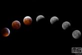 Te Koop | De maanfasen van de Supermaan en Bloedmaan tegelijkertijd te zien in de Hoeksche Waard