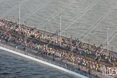 Te Koop | De lopers van de Marathon Rotterdam 2019 op de Erasmusbrug