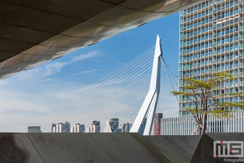 Te Koop | Een doorkijkje vanaf de Las Palmas op de Erasmusbrug in Rotterdam
