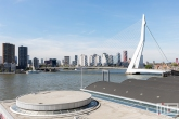 De Erasmusbrug met de Cruise Port Rotterdam in Rotterdam