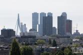 De skyline van Rotterdam met de Hoge Heren en de Erasmusbrug