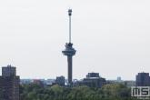 De Euromast en Het Park in Rotterdam met abseilers vanaf de toren