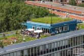 Het groene dak van Dakakkers op het Schieblock in Rotterdam