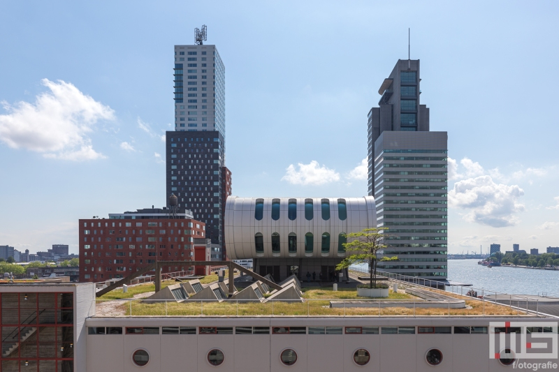 De dak van Lad Palmas op de Wilhelminapier in Rotterdam