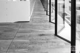 De glasramen van de Medische Bibliotheek van het Erasmus MC in Rotterdam