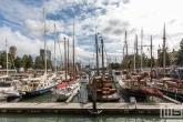 Te Koop | Een drukke Veerhaven tijdens de Wereldhavendagen 2019 in Rotterdam