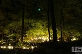 De Grote Schijn in het Kralingse Bos in Rotterdam