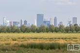 De havenstad Rotterdam vanuit de Ackerdijkseplassen