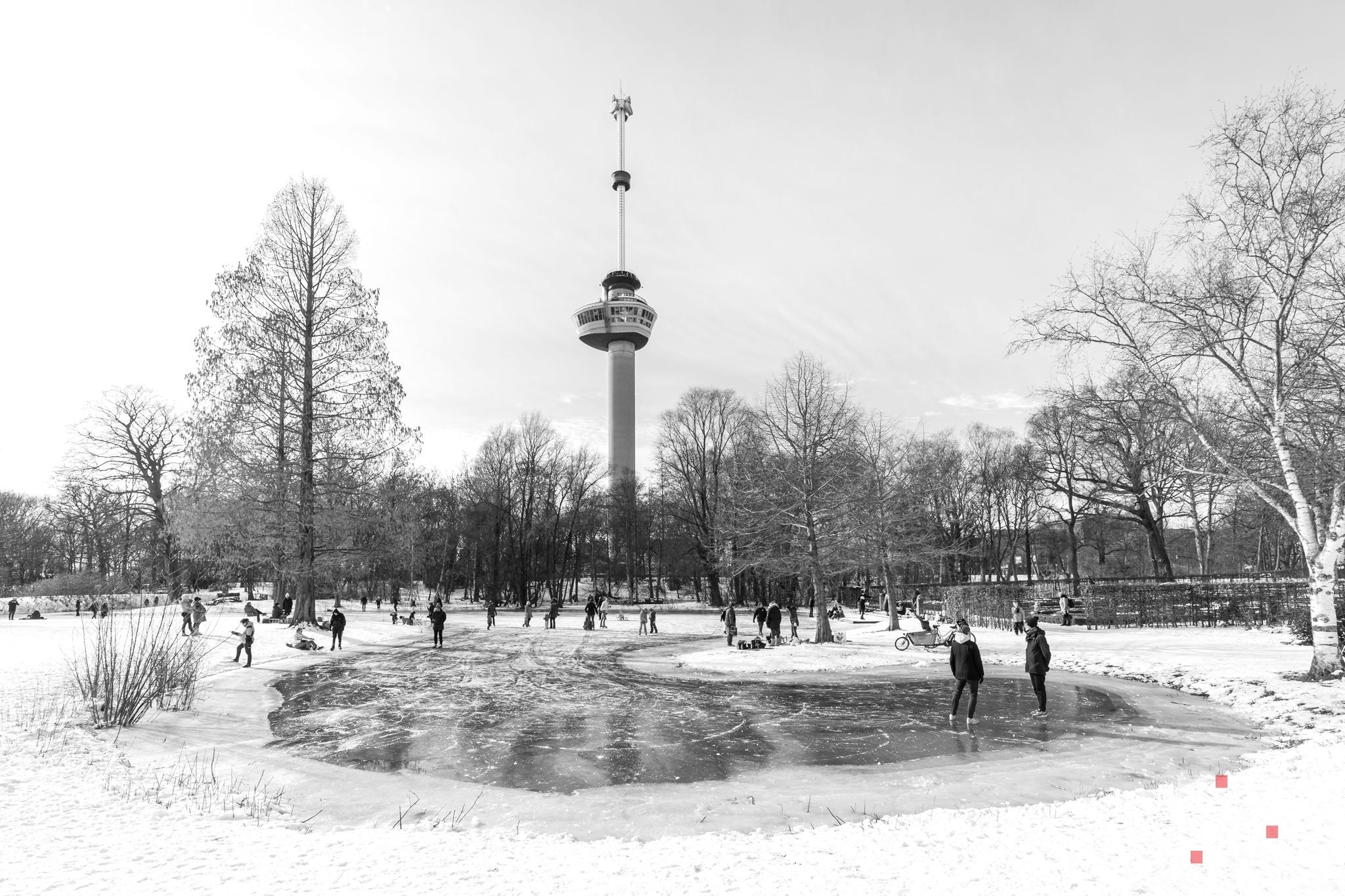 Te Koop   Sneeuw in het Park in Rotterdam met de Euromast