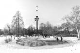 Te Koop | Sneeuw in het Park in Rotterdam met de Euromast