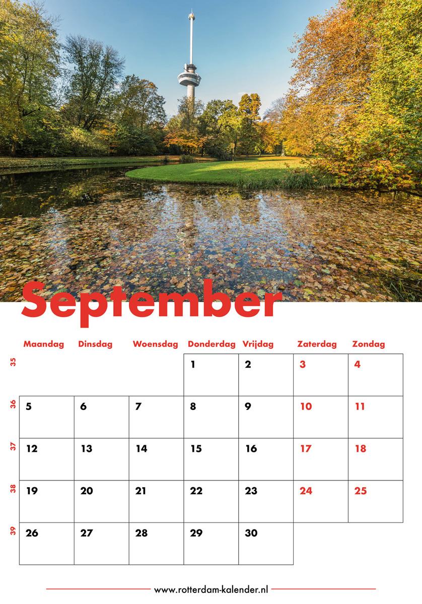 Te Koop | Het Park en de Euromast in Rotterdam in herfstkleuren