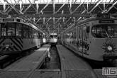 Het Trammuseum Rotterdam van Stichting RoMeO met de tram van tramlijn 10 en een werktram