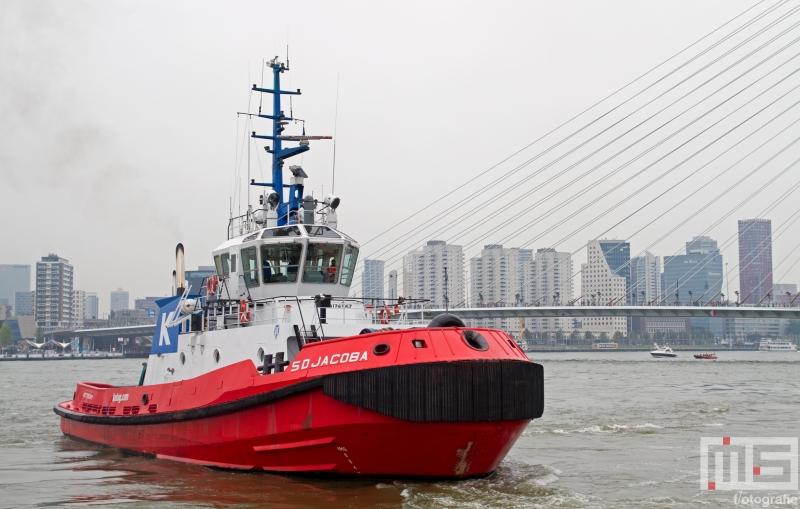 sleepboot-sd-jacoba-wereldhavendagen-rotterdam-2526-2
