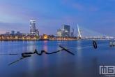 Het Maasbeeld / Wasknijper in Rotterdam by Night