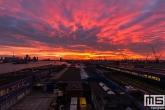 De zonsopkomst vanaf de Sluisjesdijk in het Rotterdamse Waalhavengebied