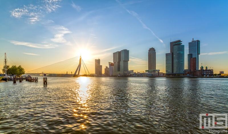 Te Koop | De zonsopkomst boven de Erasmusbrug in Rotterdam