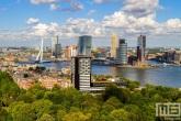 Te Koop | De skyline van Rotterdam met het Euromastpark op de voorgrond