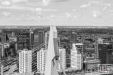 De pyloon van de Erasmusbrug in Rotterdam met op de achtergrond het stadscentrum