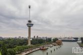 Het Abseilen van de Euromast in Rotterdam met op de achtergrond het cruiseschip Ms Rotterdam