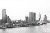 De Maastoren, Erasmusbrug en het Noordereiland in Rotterdam
