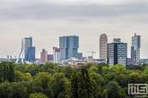 De skyline van Rotterdam met op de voorgrond Het Park