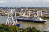 Het offshore ship Svanen van Van Oord in Rotterdam met op de achtergrond het cruiseschip Ms Rotterdam