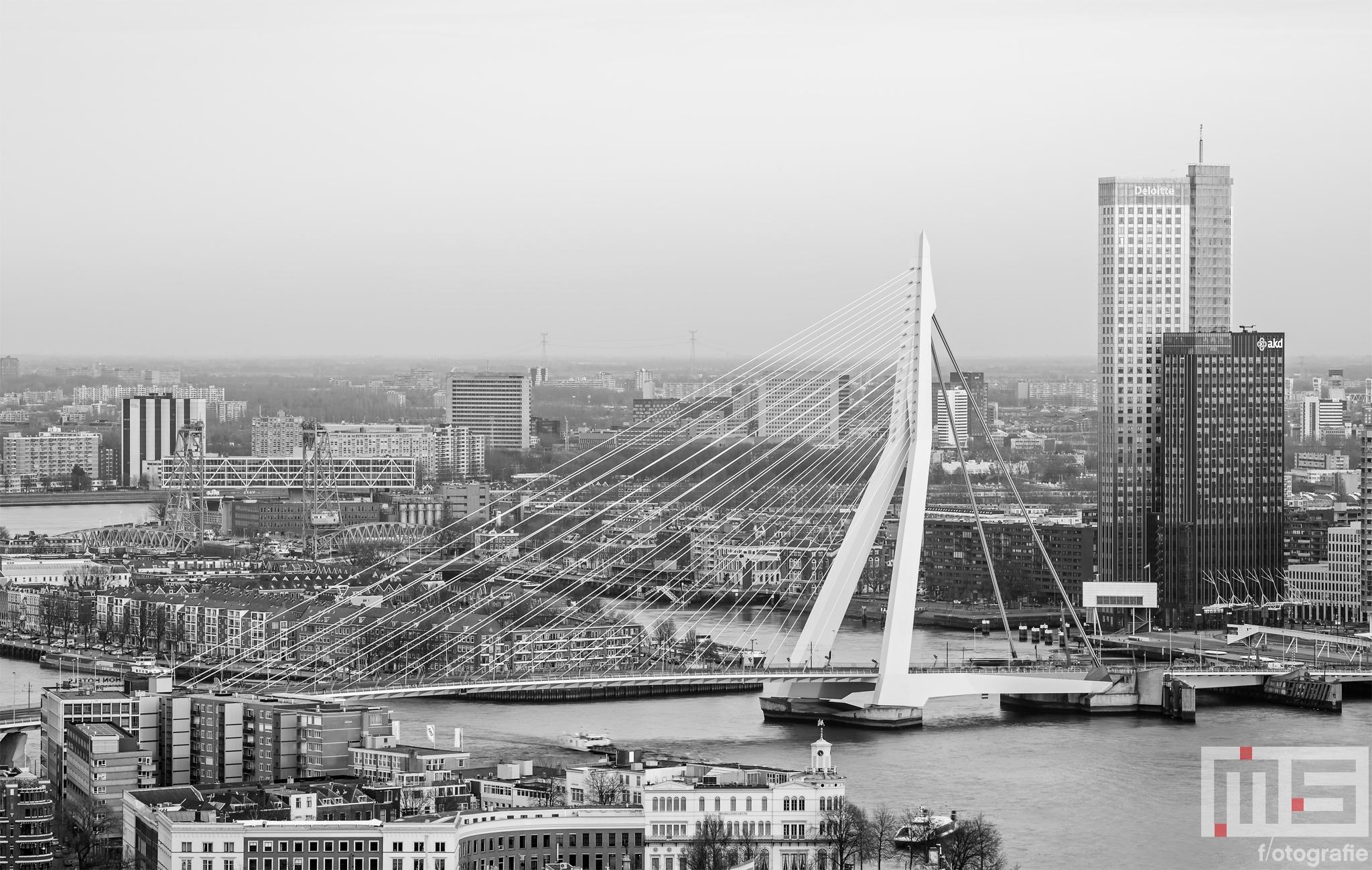 Te Koop | De Erasmusbrug in Rotterdam met de Maastoren