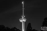 De Euromast met de Euromastpark in Rotterdam by Night