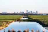 De skyline van Rotterdam vanuit de Ackerdijkse Plassen