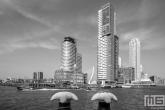 Te Koop | De Wilhelminapier met de Watertaxi Rotterdam in zwart/wit
