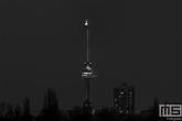 De Euromast in Rotterdam in zwart/wit