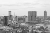 Te Koop | De Erasmusbrug en De Rotterdam in Rotterdam by Day in zwart/wit