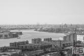 Het uitzicht op de havenstad Rotterdam in zwart/wit