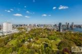 Te Koop | Het Park in Rotterdam by Day met Hollandse wolken