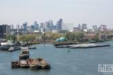 Te Koop | Het uitzicht de skyline van de havenstad Rotterdam