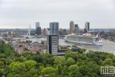 Te Koop | Het cruiseschip Harmony of the Seas gaat richting de Cruise Terminal in Rotterdam
