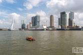 Het cruiseschip Pride of Rotterdam tijdens de Wereldhavendagen in Rotterdam